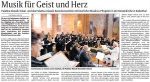 09.RHEINPFALZ_Besprechung_Eußerthal_09.06.2017
