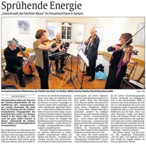 18_rheinpfalz_besprechung_feuerbachhaus_07-11-2016