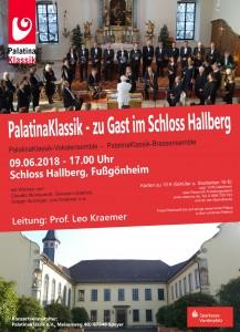 Plakat Hallberg 09.06.2018