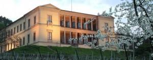 panorama-villa_ludwigshöhe-m